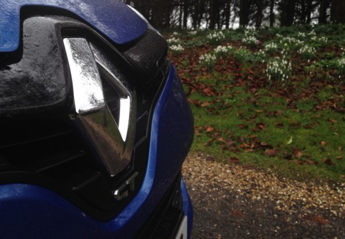 Renault Clio spring flowers February 2014